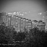Ворота города. г. Кишинев в Молдове (правая часть) :: Татьяна Жуковская
