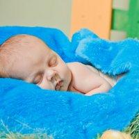 Денис, 2,5 недели :: Svetlana Shumilova