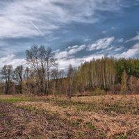 Нарастающая весна :: Владимир Макаров