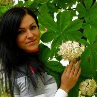 Цветут каштаны.. :: Nataliya Oleinik