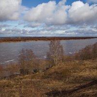 Апрель. Большая вода на Северной Двине :: Татьяна Копосова