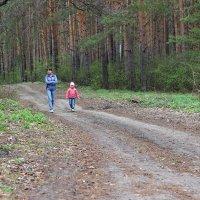 В весеннем лесу... :: Андрей Бакунин