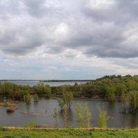 Паводок на Волге :: Dr. Olver