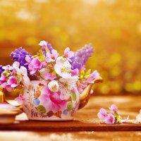 миниатюрный садовый букет :: Yulia Polugaeva