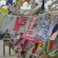 Буддийские флажки с молитвами. :: Larisa Gavlovskaya