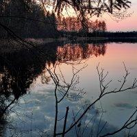 Вечер на озере. :: Александр Максимов