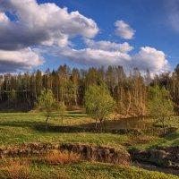 Холодный май :: Владимир Макаров