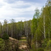 Весенний этюд :: Павел Пудов
