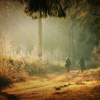 По лесной дорожке.. :: Rasa Aksom