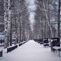 Безлюдная аллея :: Екатерина Корнева