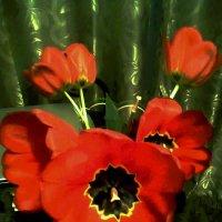 Тюльпаны. :: Ляля .