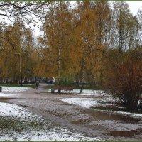 Последние аккорды зимы... :: Марина Шубина