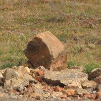 Камни у дороги :: Ольга Иргит