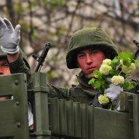 Мир Вашему дому! :: Игорь Кузьмин