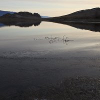 На озере :: Вера Петрова