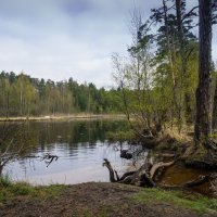 На озере :: Vasiliy V. Rechevskiy