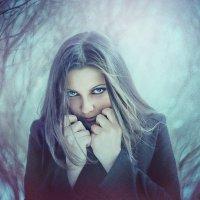 Зима :: Ежъ Осипов