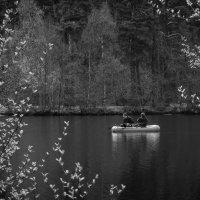 черное озеро :: Vasiliy V. Rechevskiy