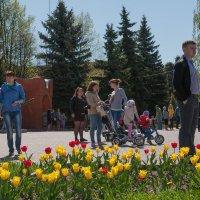 Праздничные гуляния в сельской местности :: Анастасия Богатова