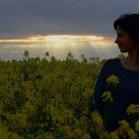 Луч красоты в одно мгновенье ока сгоняет с сердца тучи :: Наташа Ключник