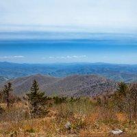 Далекие синие горы :: Boris Khershberg
