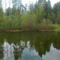озеро :: дима драйвер