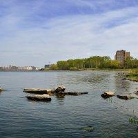 Зеленый город - зеленая весна. :: Сергей Адигамов