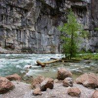 Юпшарский каньон «Каменный мешок». Абхазия. :: IS_Irin .