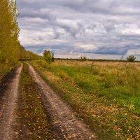 Окско-Донская равнина. Лесостепь :: Валерий Рыкунов