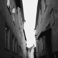 Tallinn :: Rita Sea