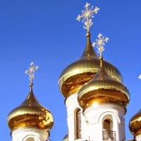 Купола Церкви Александра Невского г. Тверь :: Mila Kulikova
