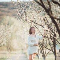 Весна :: Сергей Басин