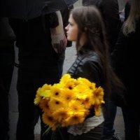 жёлтые цветы в дождливый день :: sv.kaschuk
