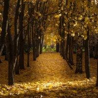 Осенние прогулки - 2 :: Евгений Барабанщиков