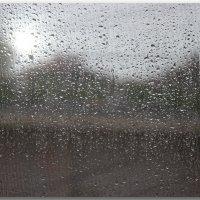 Снова дождь рисует мне... :: Елена Миронова