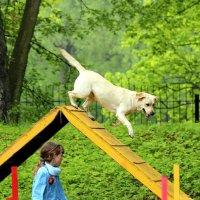 Прыжок :: Татьяна Беляева