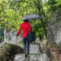 Сегодня дождь.. :: Сергей Волков