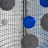Зонтики :: михаил кибирев