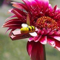 Пчелка :: Инна81 .