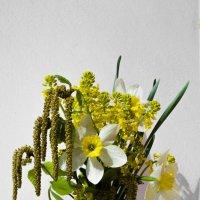 flowers :: Katy Efremowa