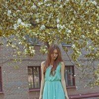 вишневый сад :: Юлия Трибунская