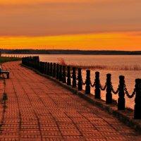 Прогулки на закате :: Андрей Куприянов