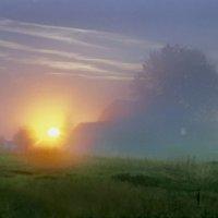 Утро в Сёмшине :: Валерий Талашов