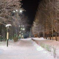 Ночная аллея :: Макс Ustyansev
