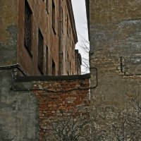Стена :: Дмитрий Близнюченко