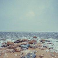 Финский залив :: Алина Репко