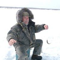 Первая рыбка моя. :: Николай Гирев