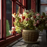 Цветы у окна. :: ValentinaS Skvorcova