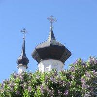 Великие Луки. Вознесенский собор... :: Владимир Павлов