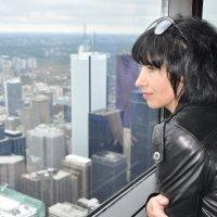 Окно в Торонто :: Татьяна Баценкова